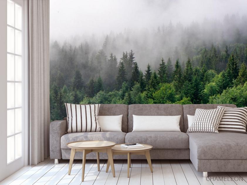 Фотообои Лес в тумане - 3