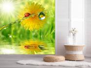 Фотообои божья коровка на листике - 2