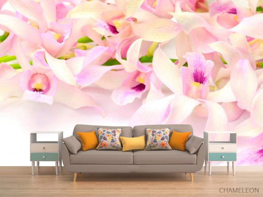 Фотообои Нежно-розовые орхидеи - 1