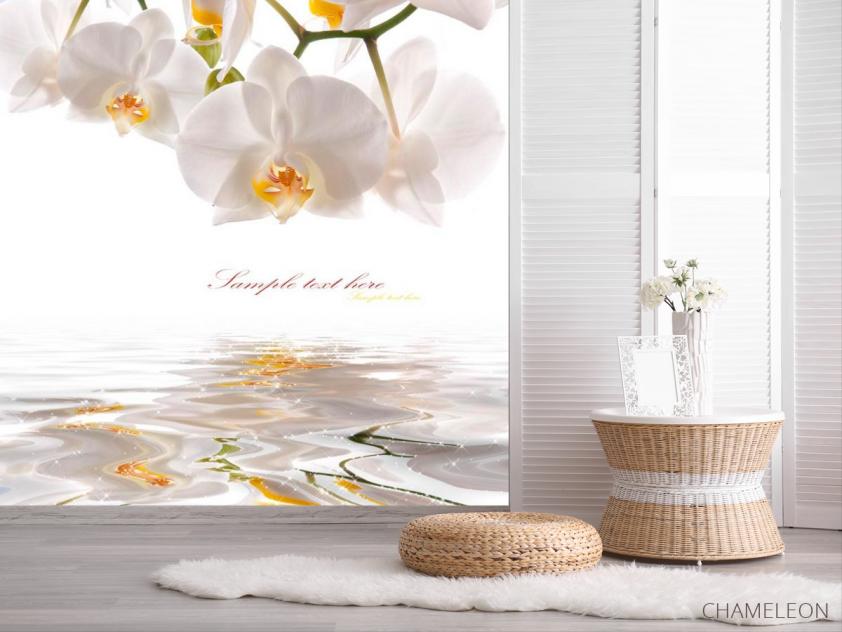 Фотообои Орхидеи белоснежные - 2