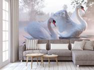 Фотообои Лебеди - 3