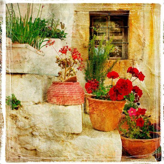 Фотообои Цветы на ступеньках