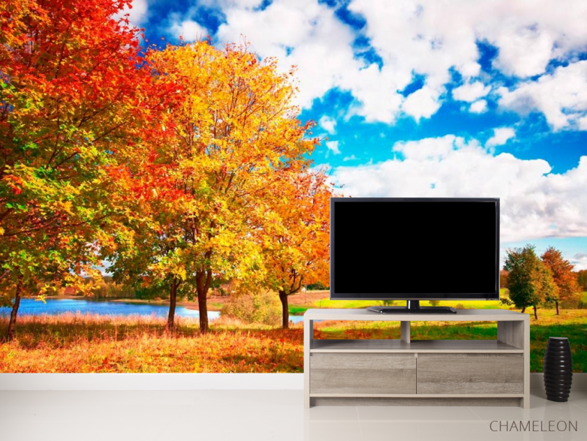 Фотообои Осень, деревья - 2