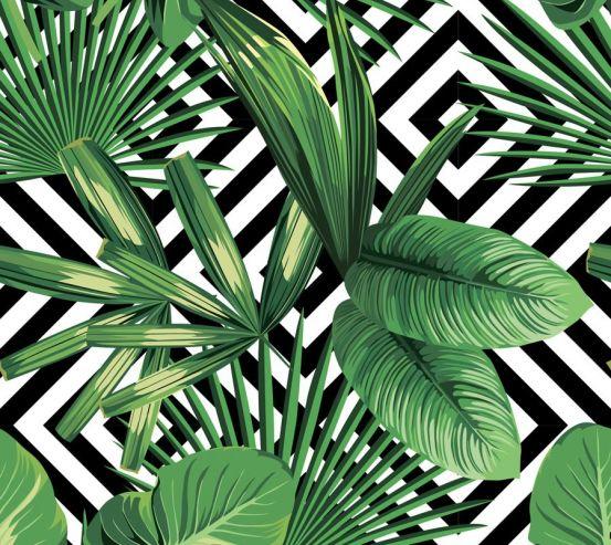 Фотообои Тропические листья 19405