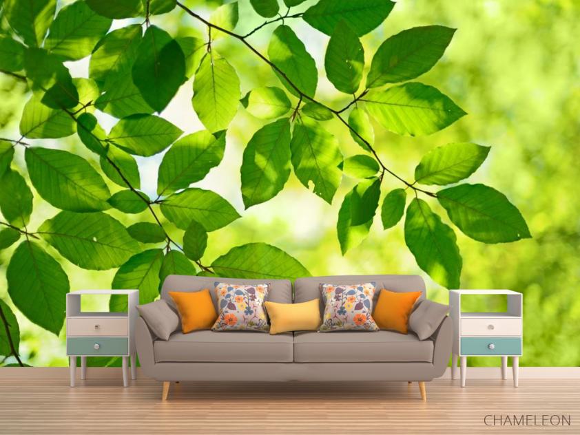 Фотообои зеленые листья на дереве - 1