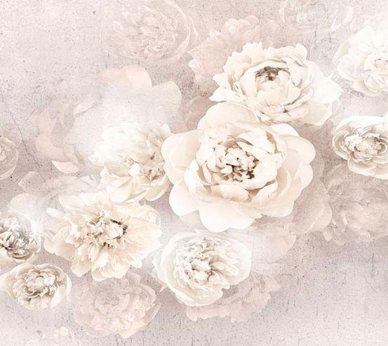 Фотообои Нежные белые пионы 20055