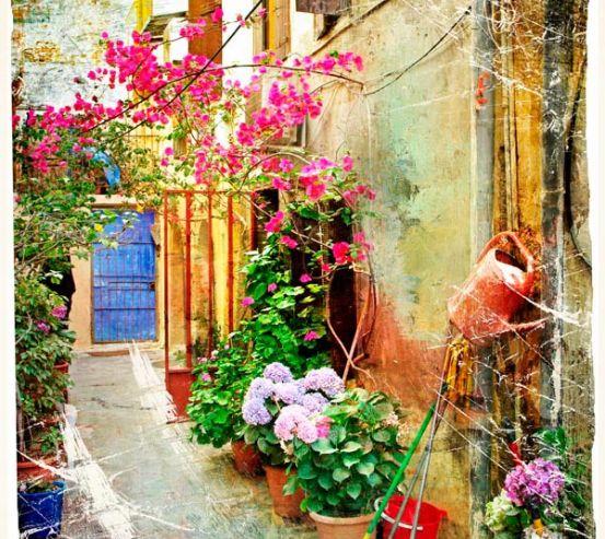 Фотообои Улочка с цветами 0056