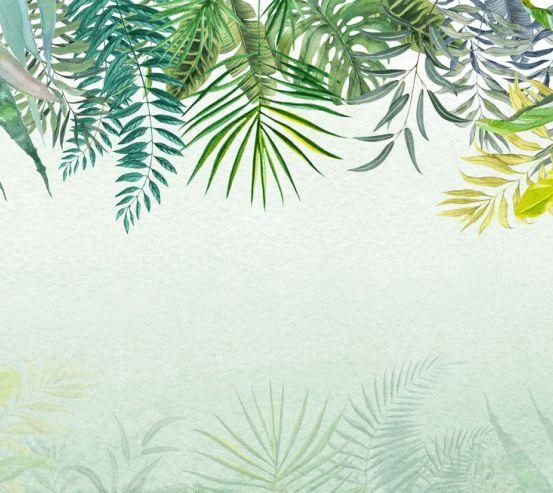 Фотообои Тропические листья 24208