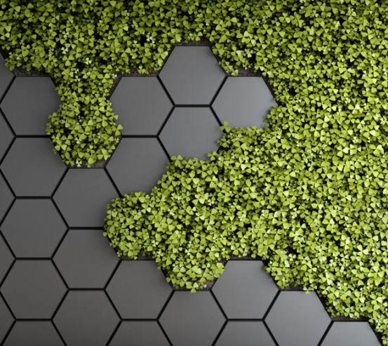 Фотошпалери шестикутники з зеленню 28506