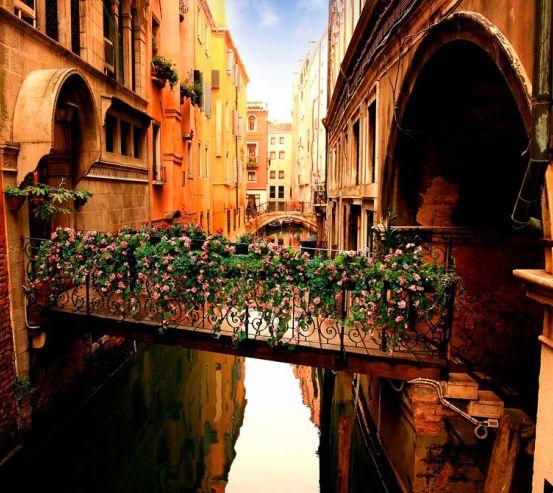 Фотообои Улочка в Венеции с цветами 8572