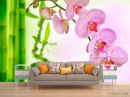 Фотообои Орхидеи и бамбук - 1